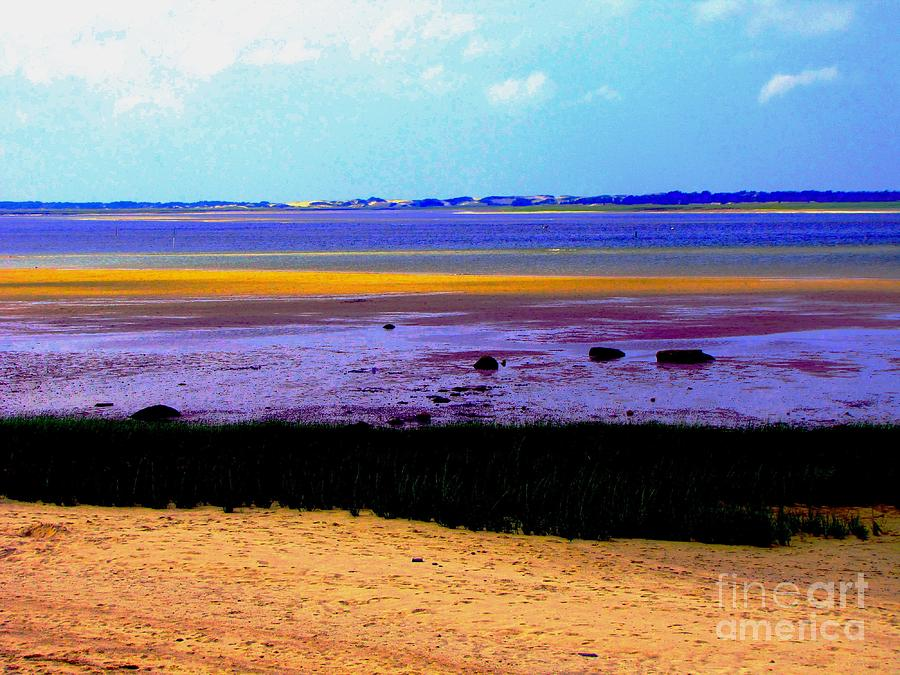 Cape Cod Beach Photograph  - Cape Cod Beach Fine Art Print