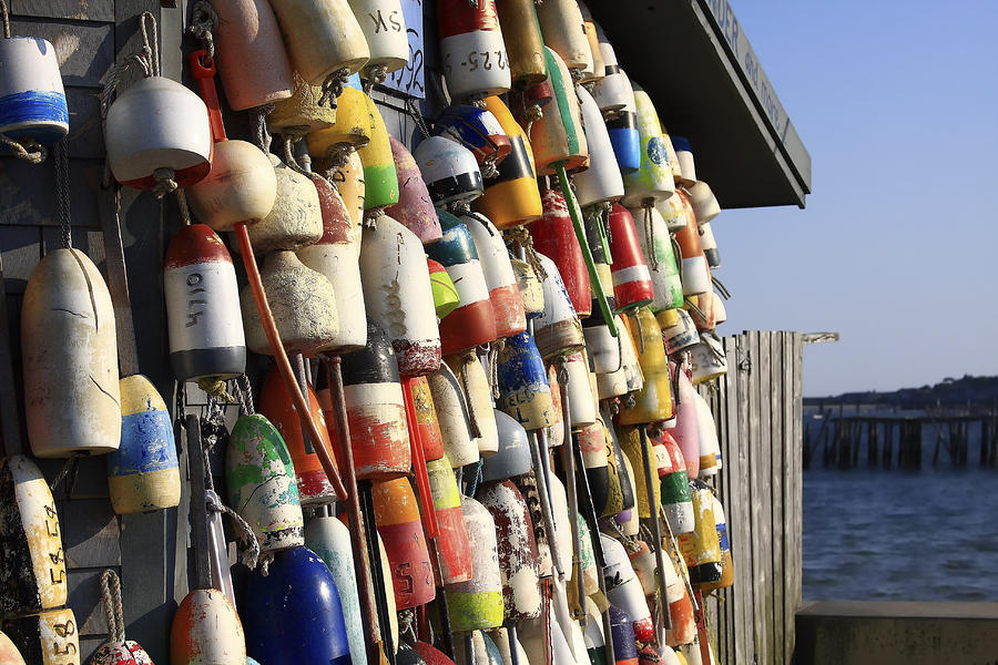 Cape Cod Buoys Photograph