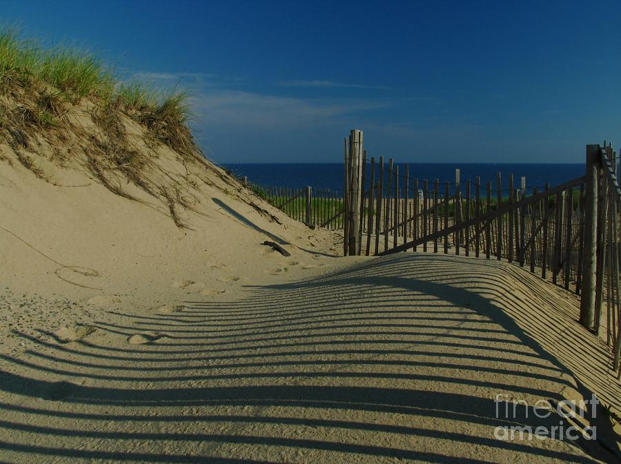 Cape Cod National Seashore Photograph  - Cape Cod National Seashore Fine Art Print