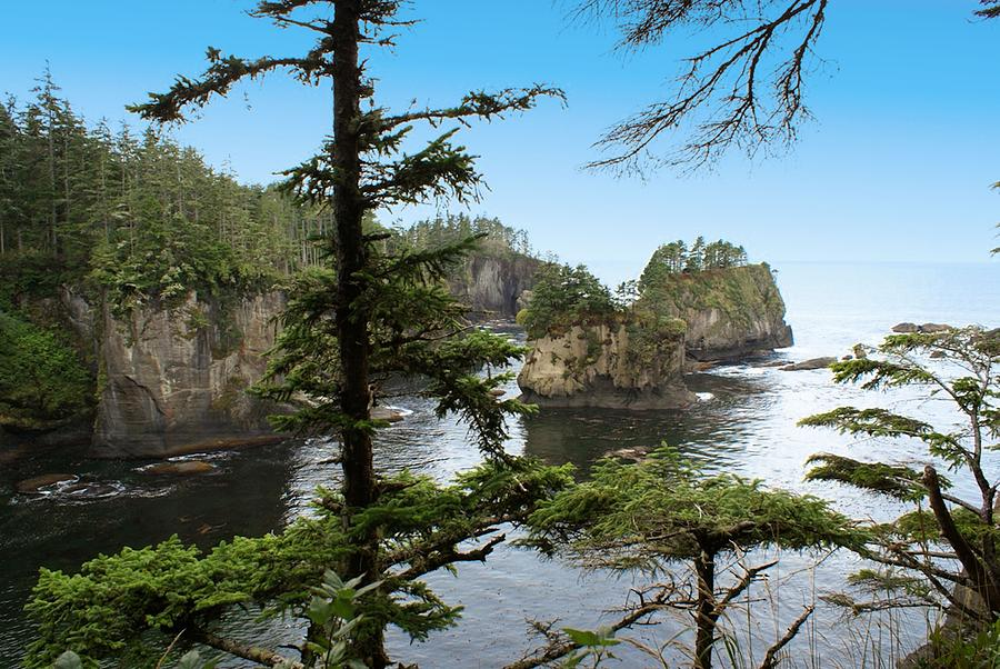 Beautiful Cape Flattery Photograph - Cape Flattery by Christy Leigh