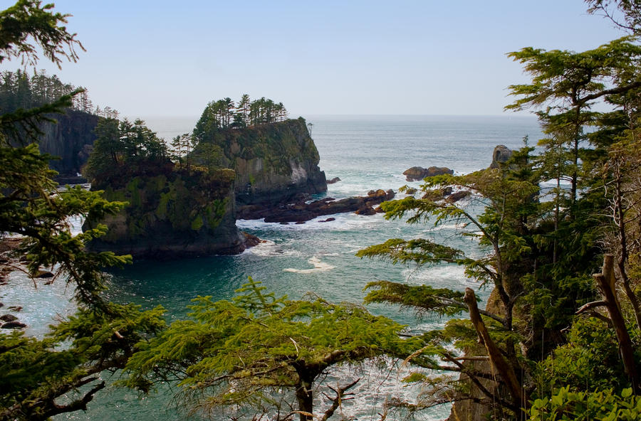 Cape Flattery Inlet Washington Photograph
