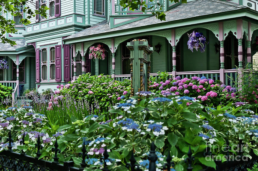 Cape May House And Garden. Photograph  - Cape May House And Garden. Fine Art Print