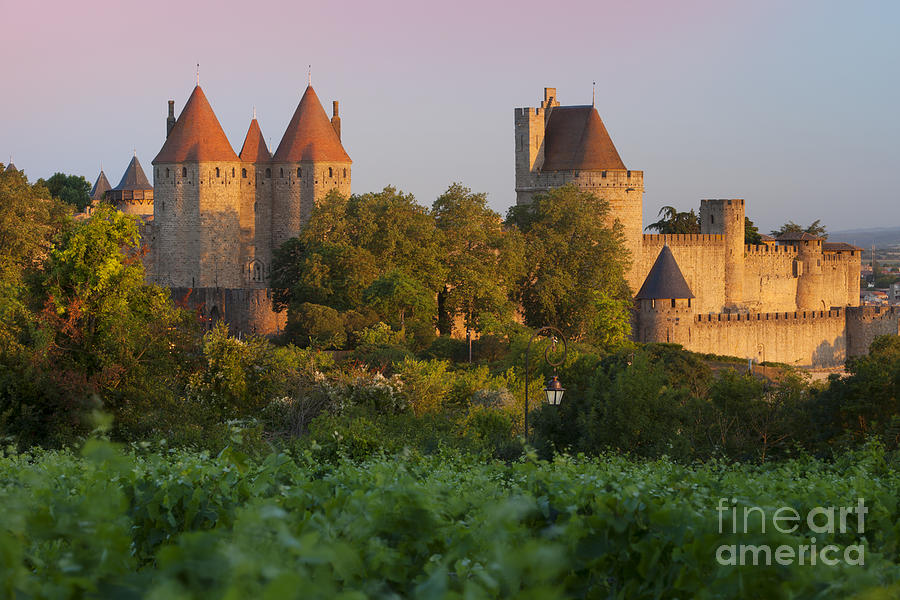 Carcassonne Dawn Photograph  - Carcassonne Dawn Fine Art Print