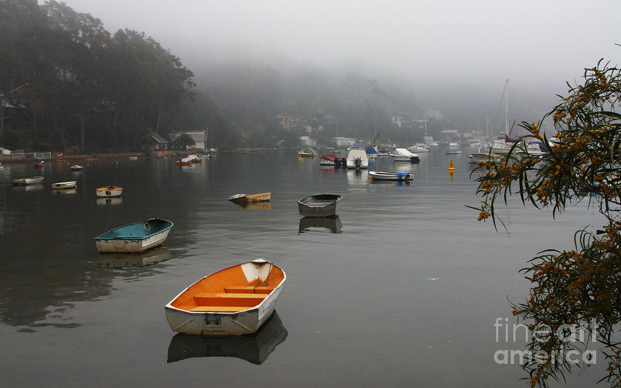 Careel Bay Mist Photograph