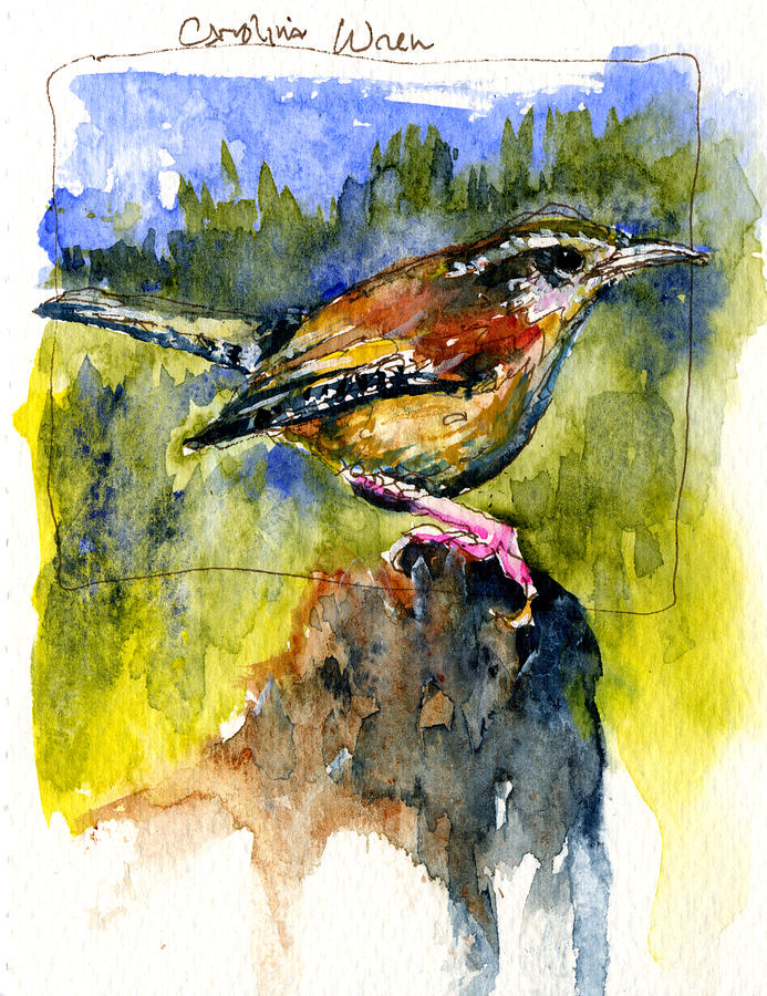 Carolina Wren Painting  - Carolina Wren Fine Art Print
