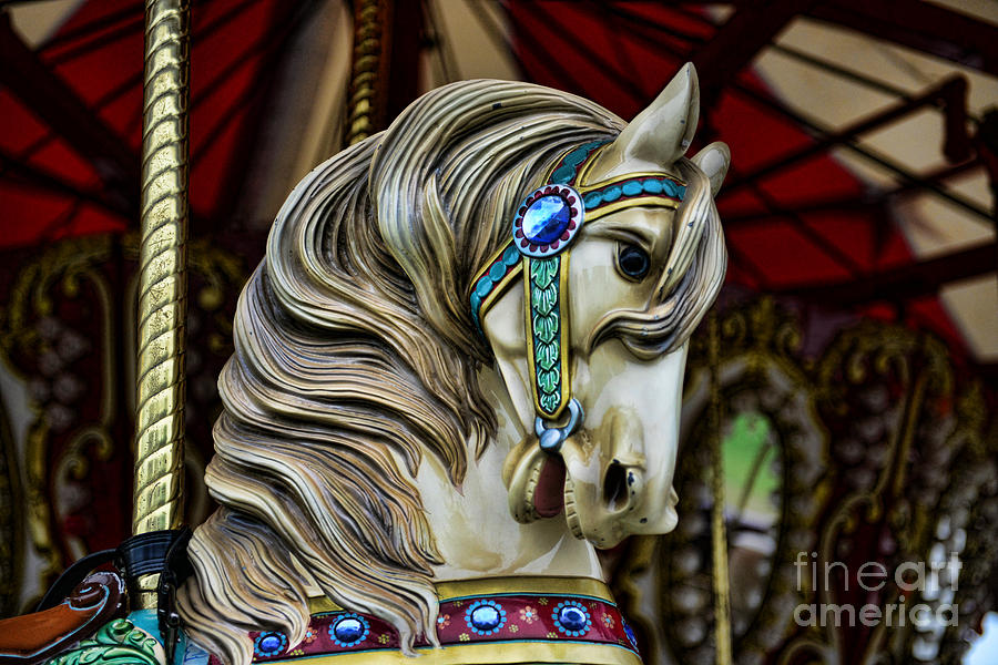 Carousel Horse 3 Photograph