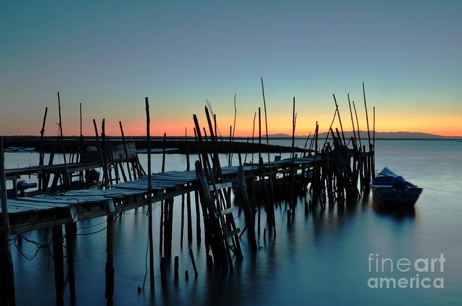 Carrasqueira - Portugal Photograph  - Carrasqueira - Portugal Fine Art Print