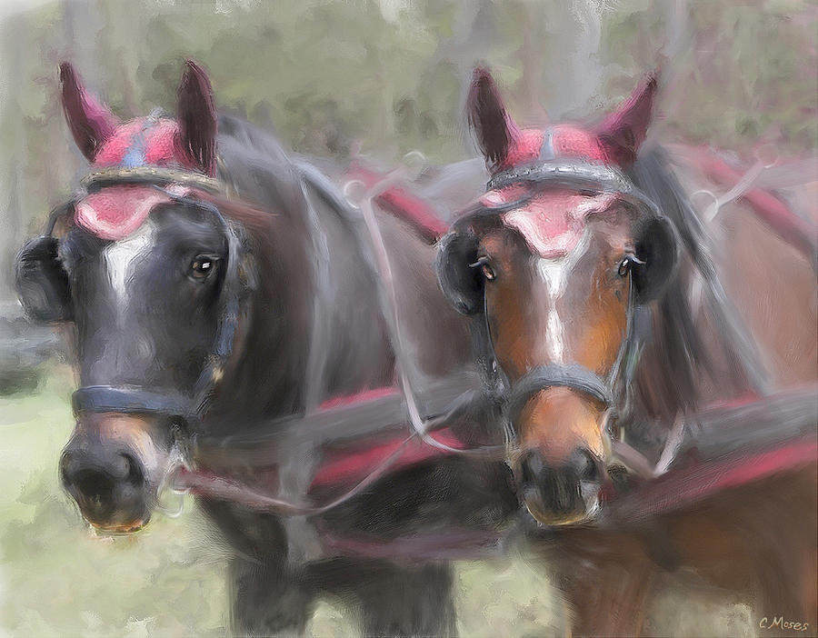 Carriage Horses Pleasure Pair Painting
