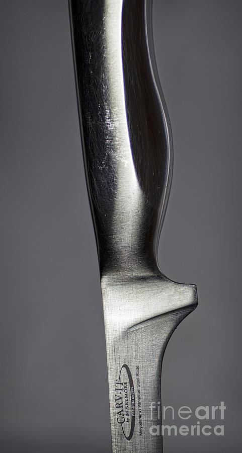 Metal Photograph - Carv-it by Elena Nosyreva