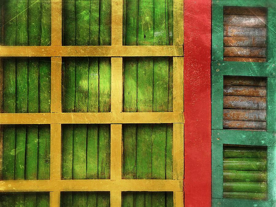 Casa De Macaw Photograph