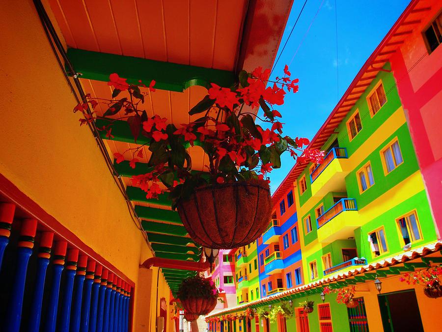 Casa Dulce Photograph