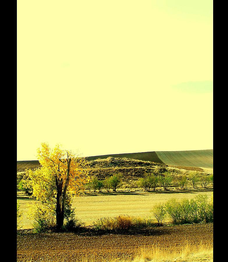 Nature Photograph - Castilla La Mancha Spain by Guadalupe Nicole Barrionuevo
