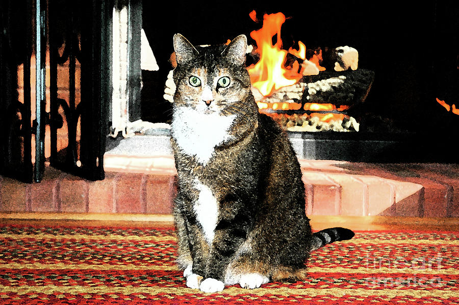 Cat And Hearth Photograph  - Cat And Hearth Fine Art Print
