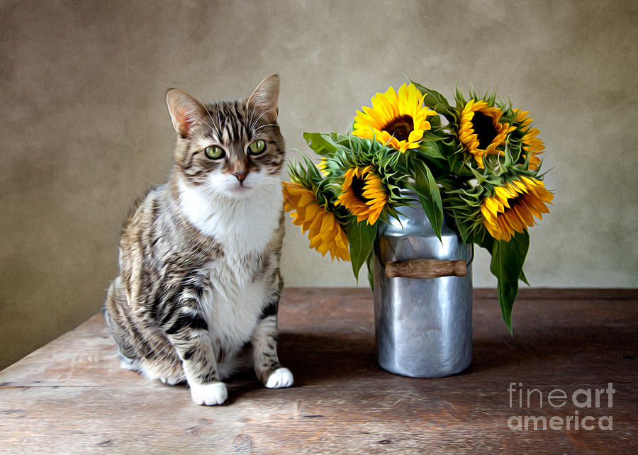 Cat And Sunflowers Painting  - Cat And Sunflowers Fine Art Print
