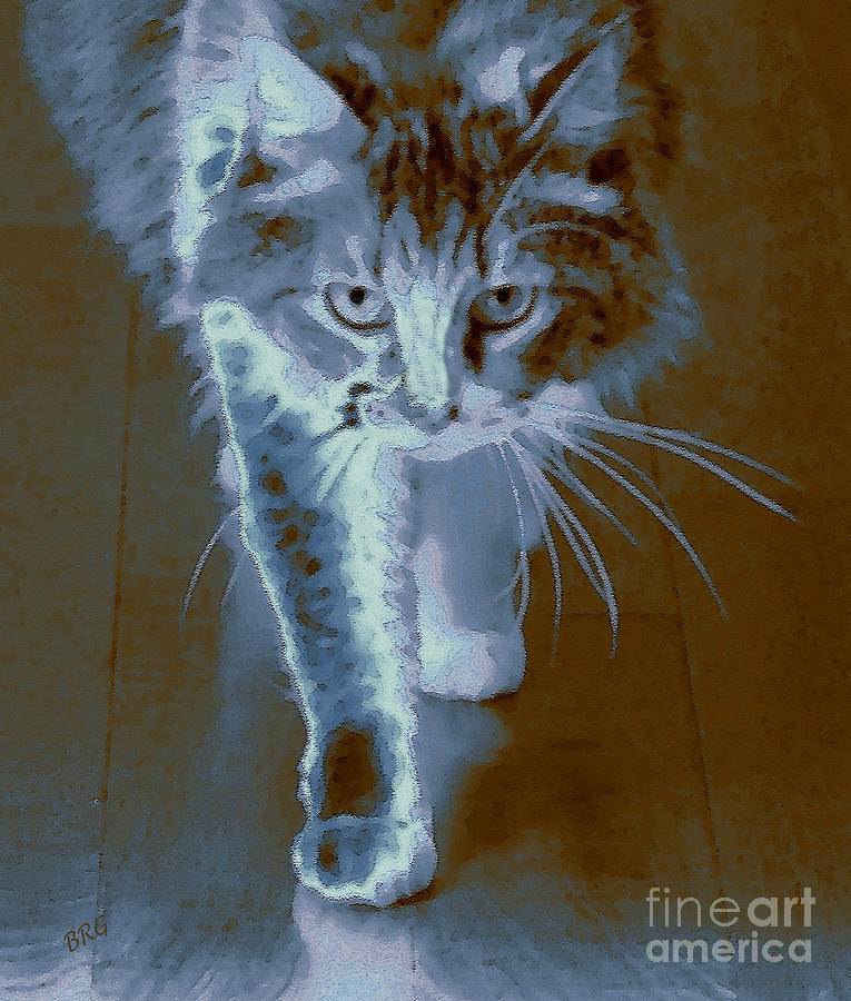 Cat Walking Photograph  - Cat Walking Fine Art Print