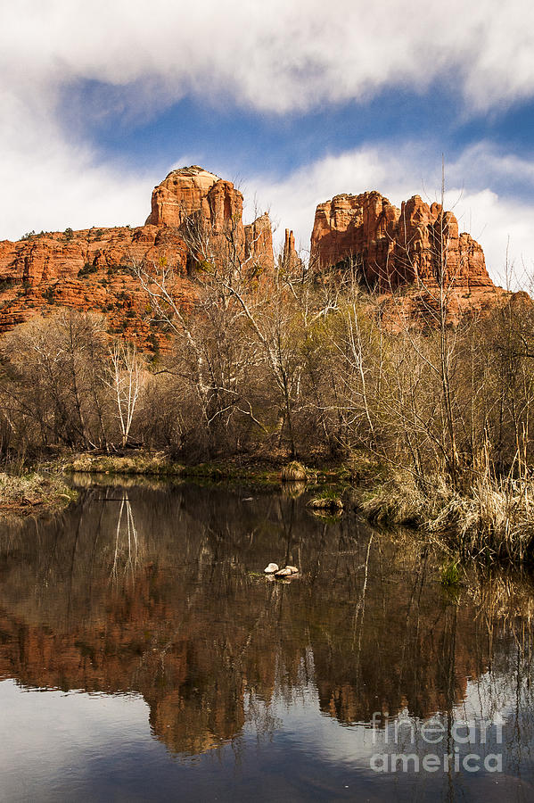Cathedral Rock Reflections Portrait 1 Photograph  - Cathedral Rock Reflections Portrait 1 Fine Art Print
