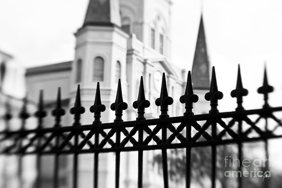 Catheral Basilica Photograph