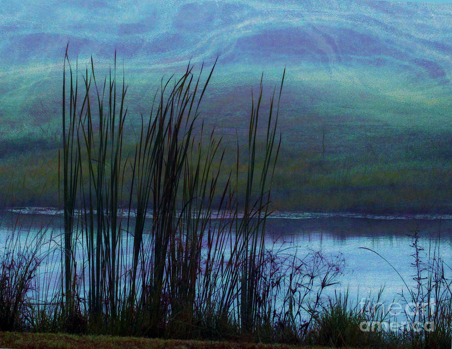 Cattails In Mist Photograph  - Cattails In Mist Fine Art Print