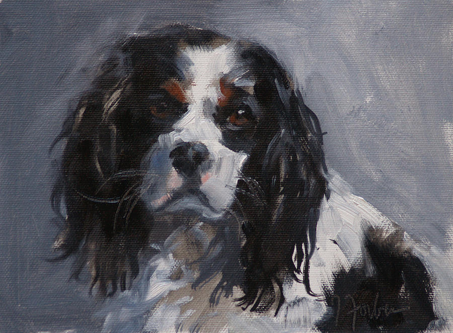 2013 Cavalier King Charles Spaniels Calendar | Dog Breeds Picture
