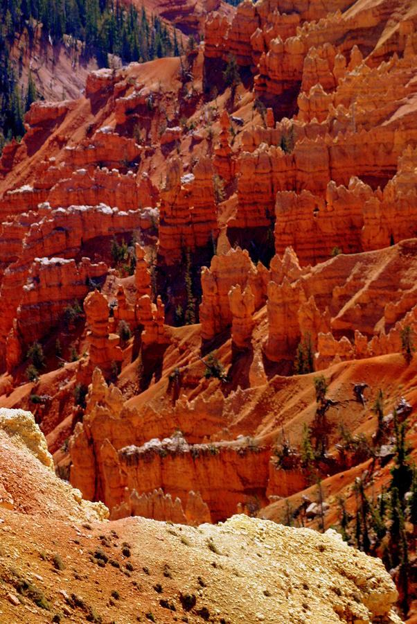 Cedar Breaks 3 Photograph  - Cedar Breaks 3 Fine Art Print