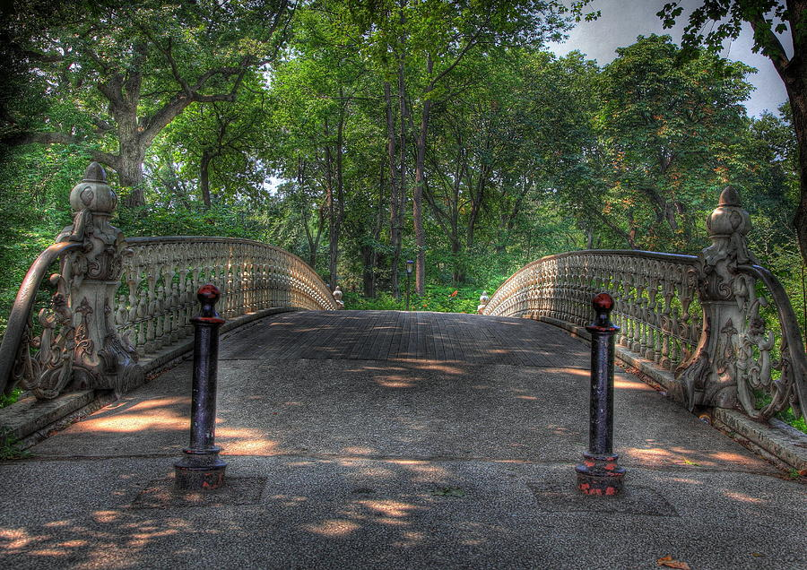 Central Park Bridge Photograph  - Central Park Bridge Fine Art Print