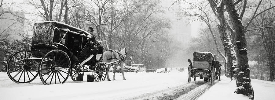 Central Park In Falling Snow Photograph