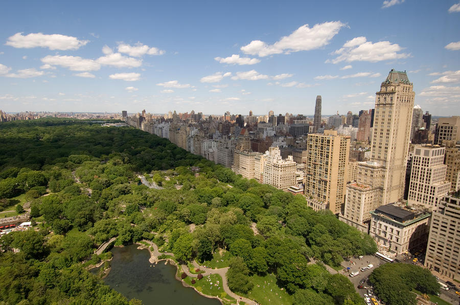 Central Park In New York City Photograph