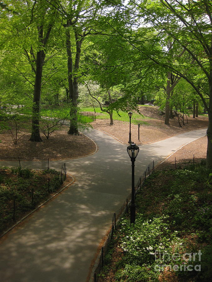 [Obrazek: central-park-paths-patti-gray.jpg]