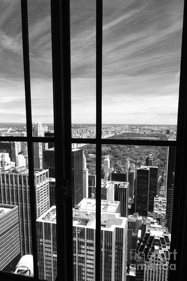 Central Park Window Photograph