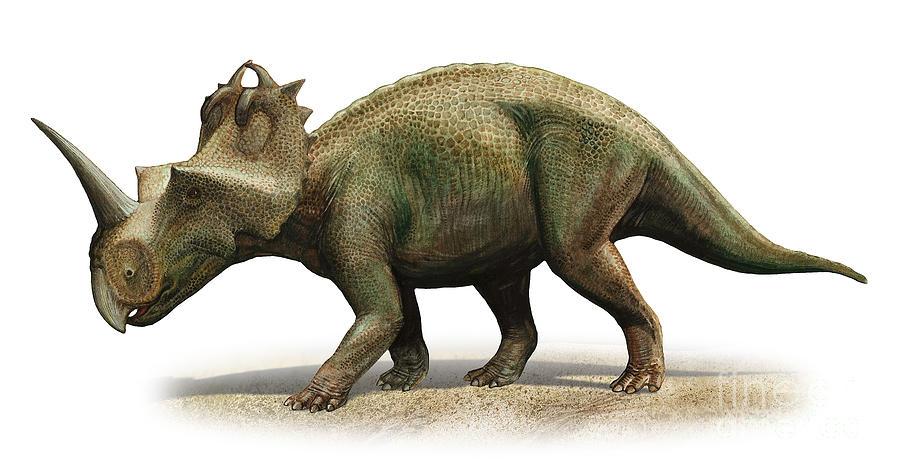 Centrosaurus Apertus, A Prehistoric Era Digital Art