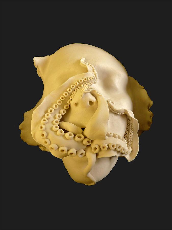 cephalophilia Ceramic Art