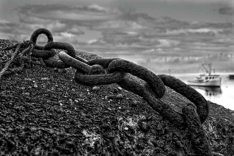 Chained Photograph  - Chained Fine Art Print