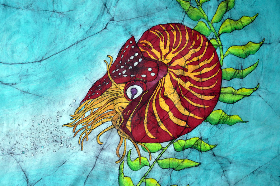 Chambered Nautilus Painting