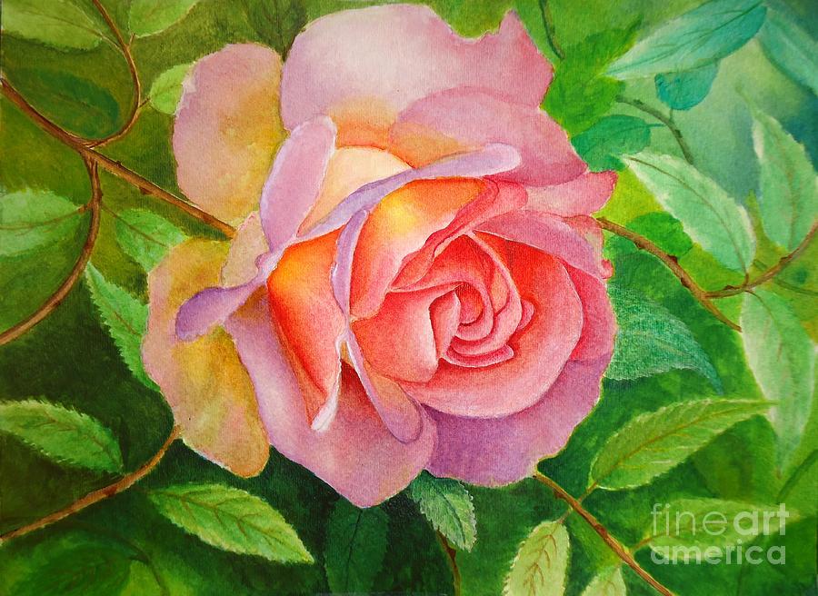 Pink Rose Watercolor Painting - Charming Beauty by Anjali Vaidya
