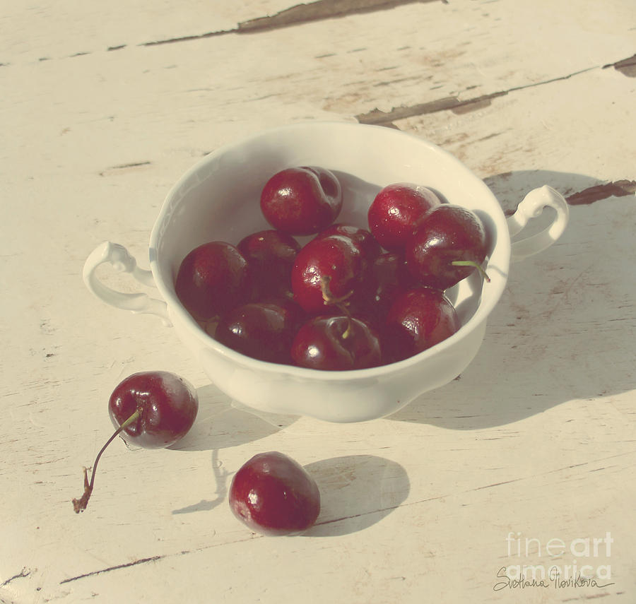 Cherries Still Life  Photograph  - Cherries Still Life  Fine Art Print
