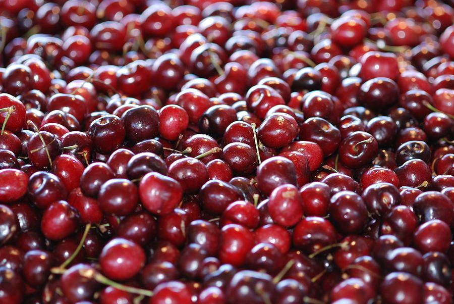 Cherry Photograph  - Cherry Fine Art Print
