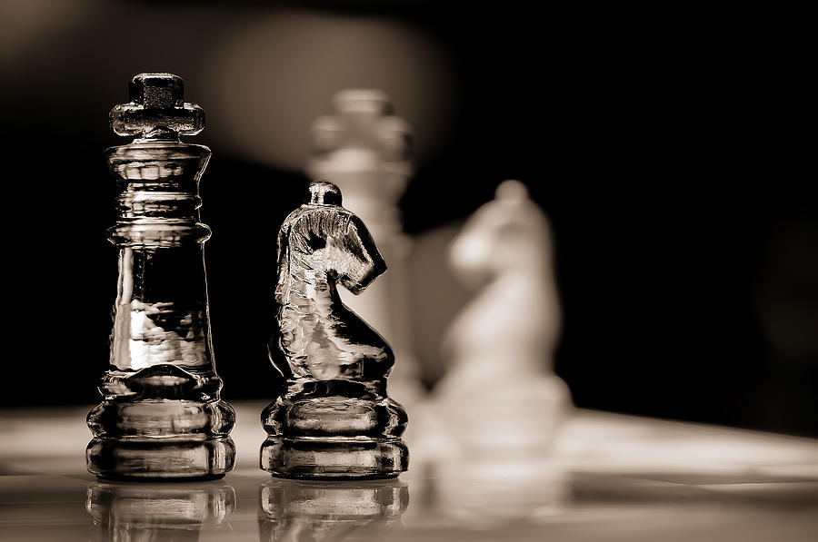 Chess King And Knight Photograph By Lori Coleman