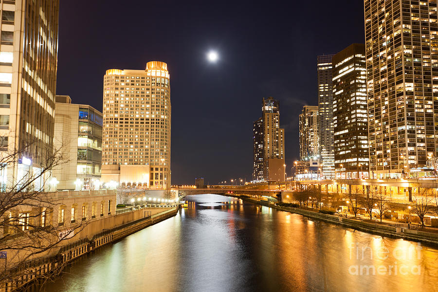 Chicago At Night At Columbus Drive Bridge Photograph  - Chicago At Night At Columbus Drive Bridge Fine Art Print