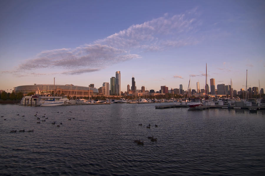 Chicago Harbor And Skyline Photograph