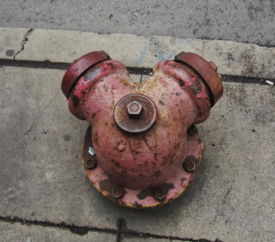 Chicago Hydrant Photograph
