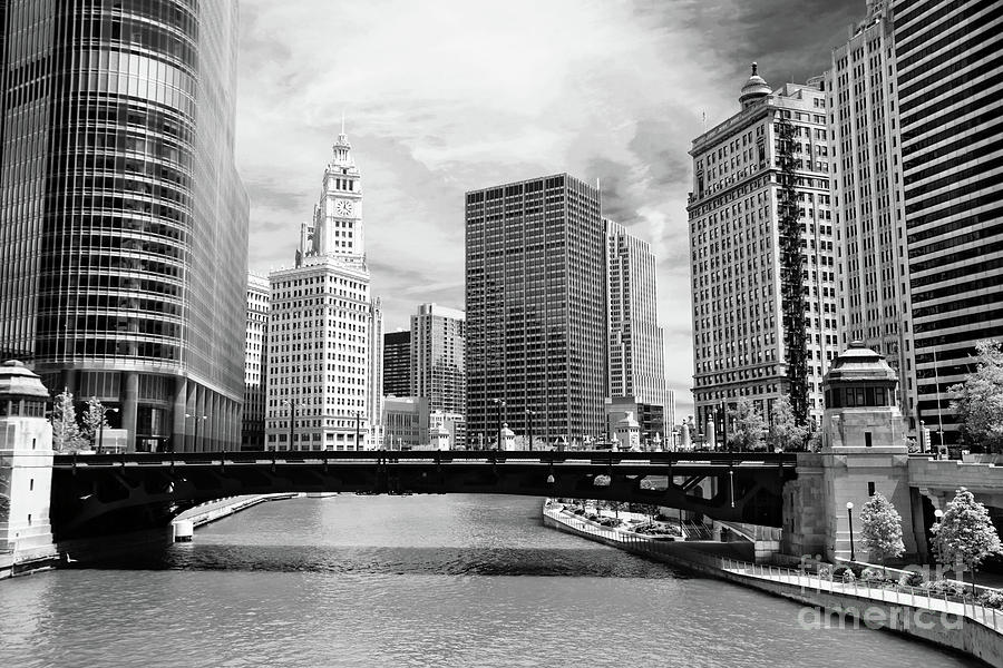 Chicago River Buildings Skyline Photograph