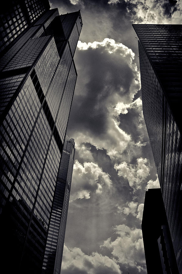 Chicago Willis Tower Photograph  - Chicago Willis Tower Fine Art Print