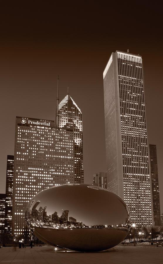 Chicagos Millennium Park Bw Photograph