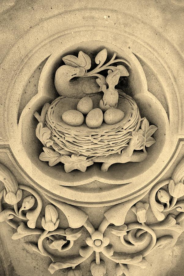 Chicks In Stone In Sepia Photograph