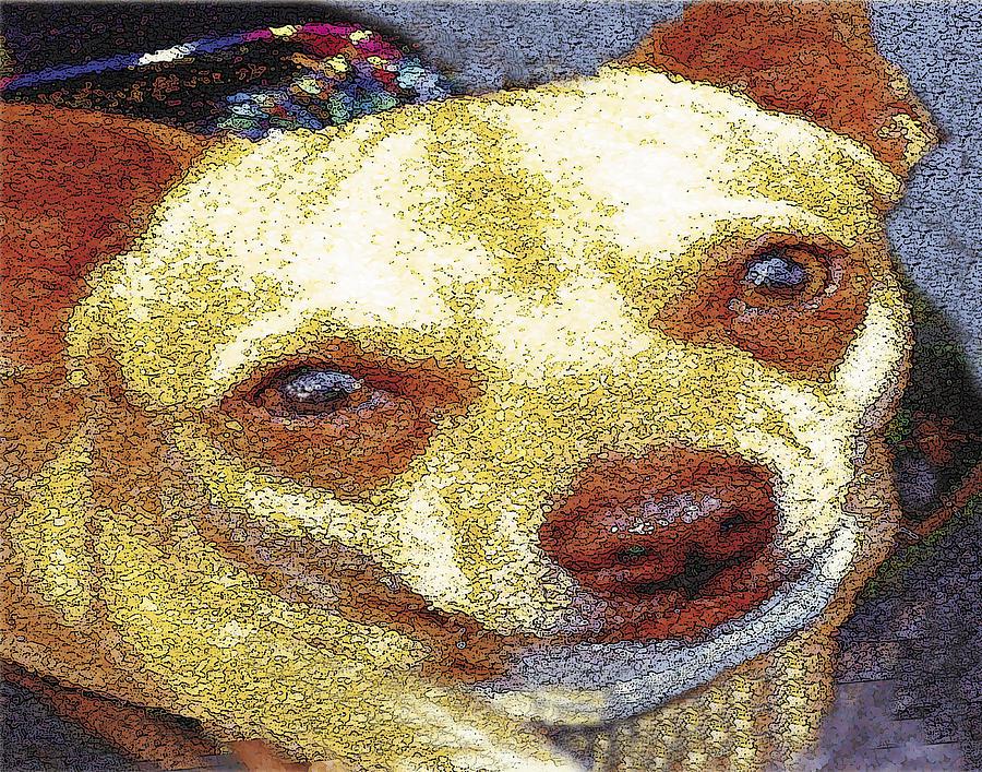 Chihuahua Digital Art