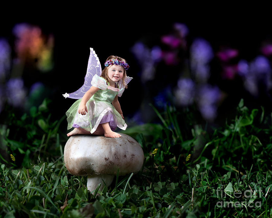 Child Fairy On Mushroom Photograph