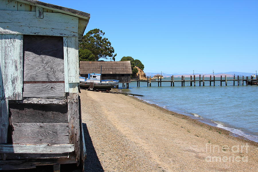 China Camp In Marin Ca Photograph