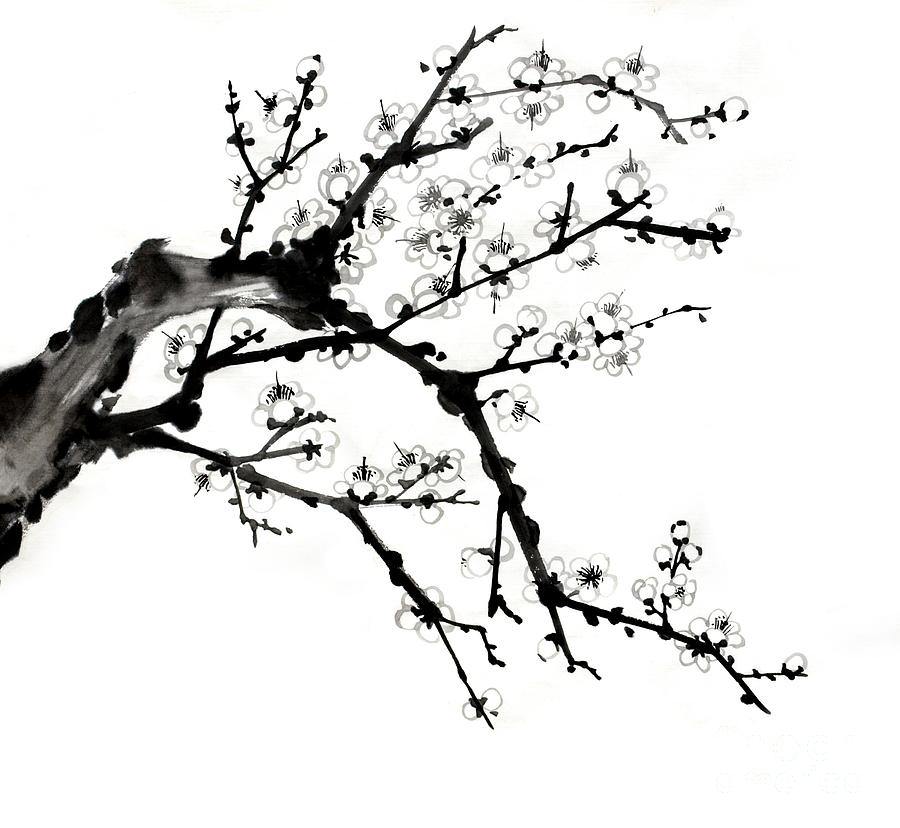 Chinese Ink Plum Blossom Painting Drawing  - Chinese Ink Plum Blossom Painting Fine Art Print