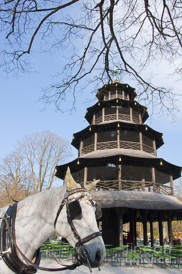 Bavarian Photograph - Chinese Pagoda  by Andrew  Michael