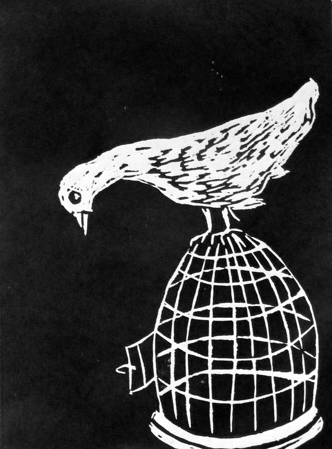 Bird Mixed Media - Choice by Roselyne Williams